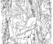 Coloriage Tarzan Affiche