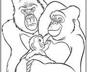Coloriage Tarzan élevé par des grands singes