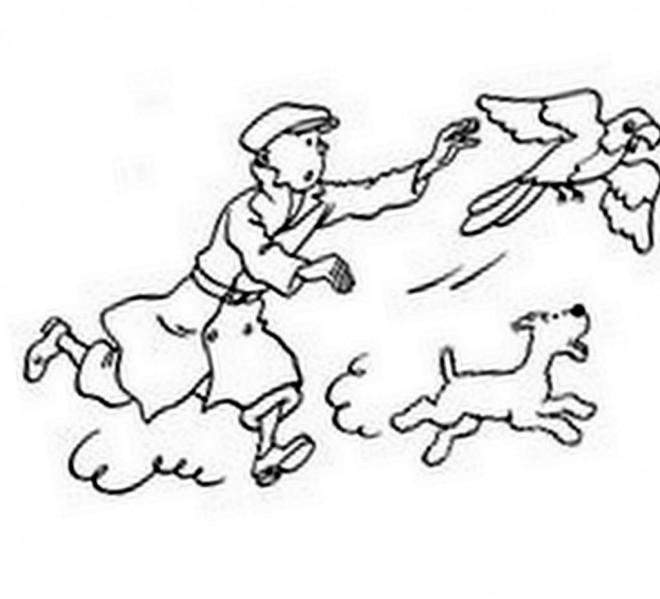 Coloriage et dessins gratuits Tintin attrape le Perroquet à imprimer