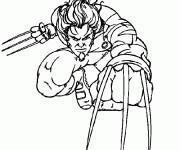 Coloriage Wolverine avec ses armes aux mains