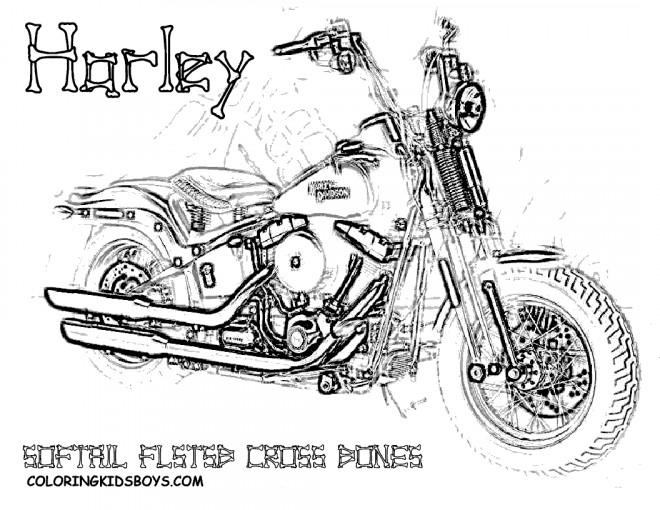 60515 Brembo Bremsscheibe Fur Harley Davidson Fxdl Dyna Glide Low Rider 1450 Cm 2000 2006 Vorne Schwimmend also  furthermore 1924 Sissybar Schienalino Quadro Corto Harley Fxd Dyna 06 12 moreover 1994 Dyna Convertible Wiring Diagram also 297589487853221372. on harley dyna fxdl