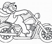 Coloriage Ours pilote sa Moto Harley